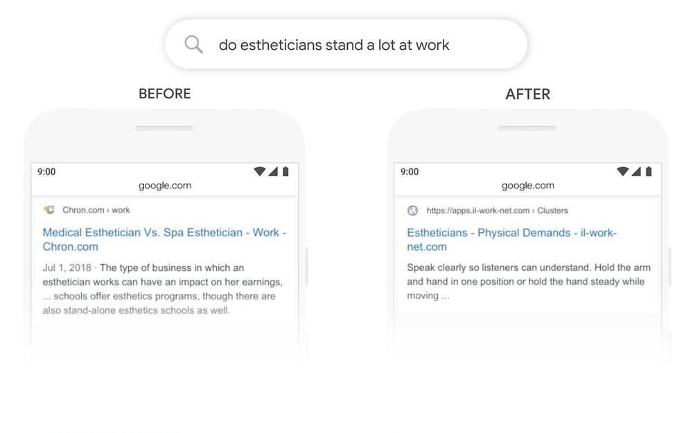 BERT & google search results