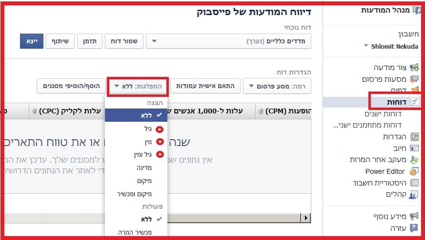 """קמפיינים בפייסבוק - דו""""חות"""