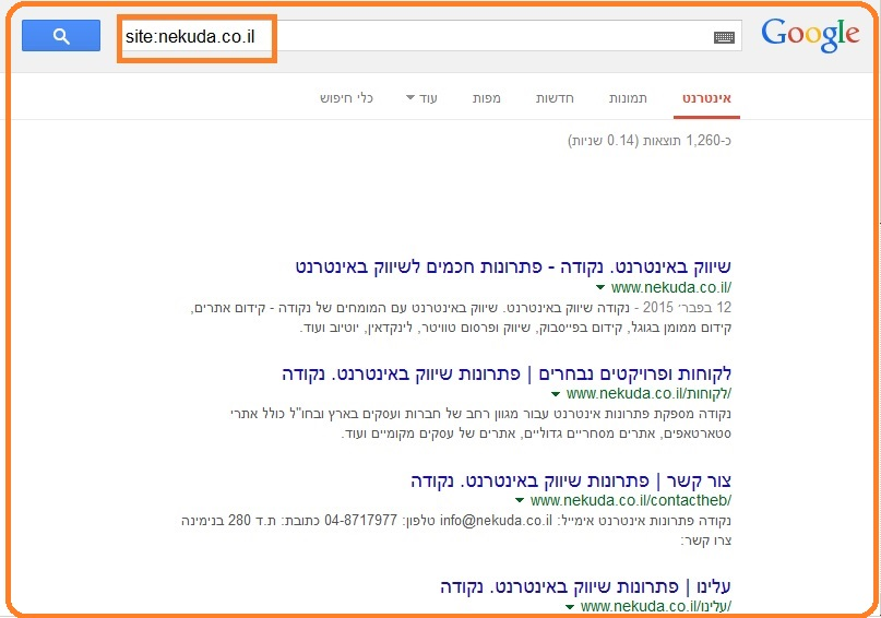 seo-audit-search-results